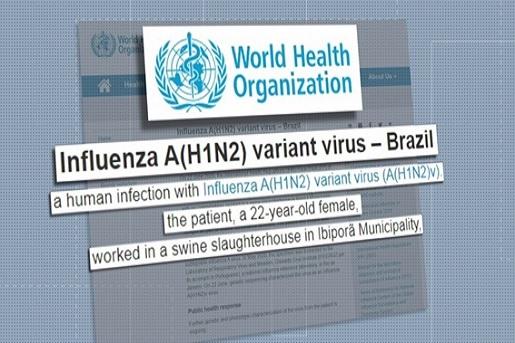A OMS detectou um novo vírus com potencial pandêmico no Brasil?