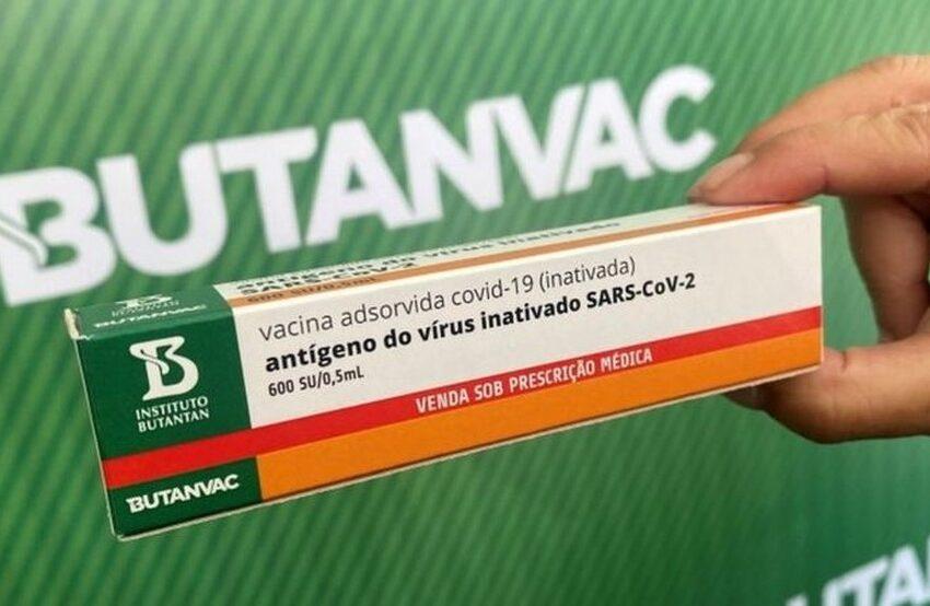 Instituto Butantan inicia a produção da vacina Butanvac mesmo sem aval da ANVISA para testes em humanos?